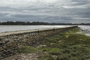 Le chemin de halage à Pont l'Abbé (6)