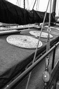 sur les pontons du Port ruz (2 sur 4)