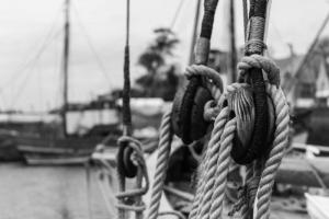 sur les pontons du Port ruz (4 sur 4)