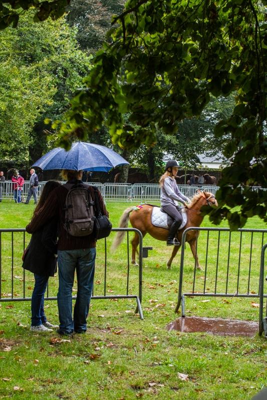 fete du cheval  beuzec-12