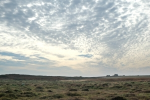 Ouessant-11