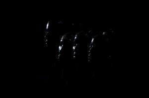 Profils noirs1