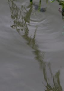 19042016-IMG_0401
