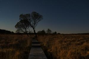 Nuit_MA-10