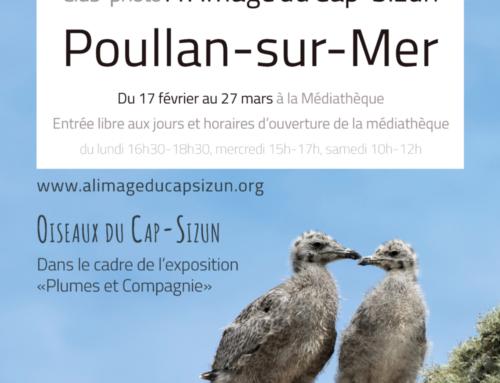 Expo à la médiathèque de Poullan-sur-Mer